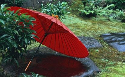 Купить зонт на Алиэкспресс