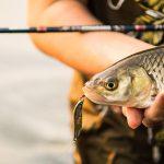 Купить блесны на Алиэкспресс: 10 качественных наживок для ловли хищника