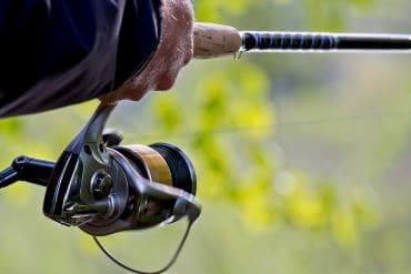 Купить катушку на Алиэкспресс: 10 качественных и недорогих вариантов для рыбалки