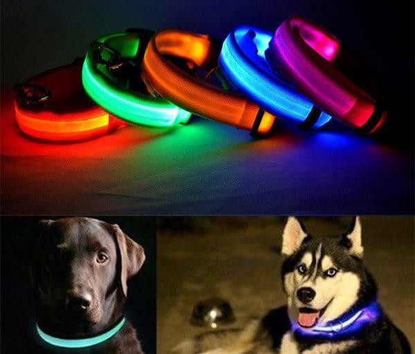Светящийся ошейник для собак  купить на Алиэкспресс