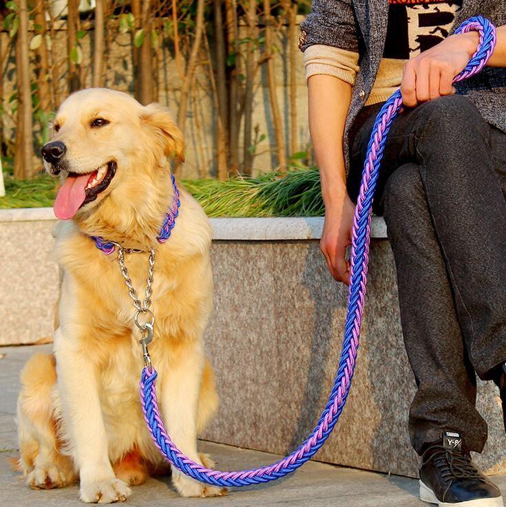 Ошейник и поводок для собак  купить на Алиэкспресс
