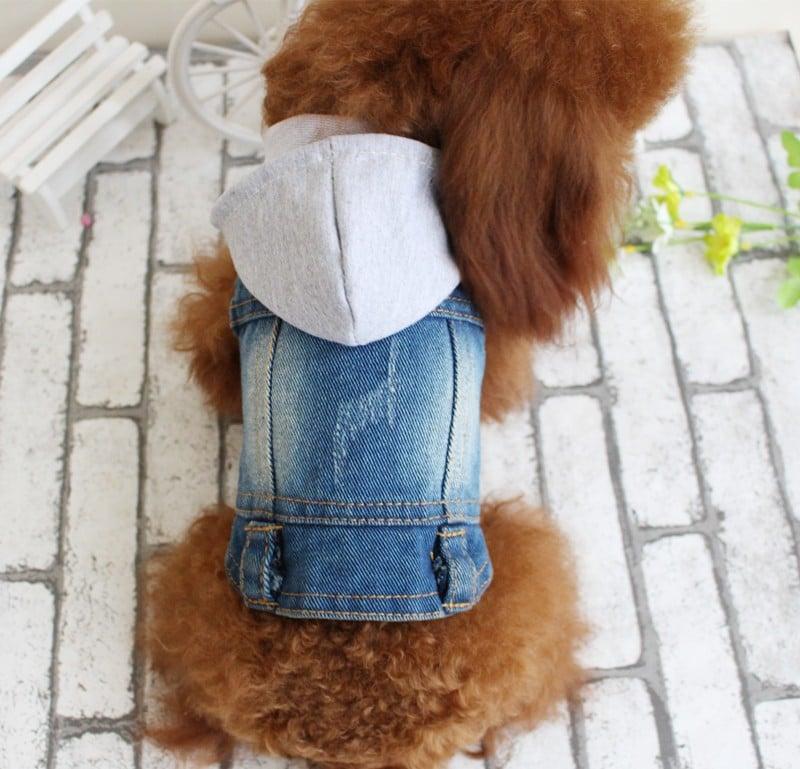 Комбинезон для собаки купить на Алиэкспресс