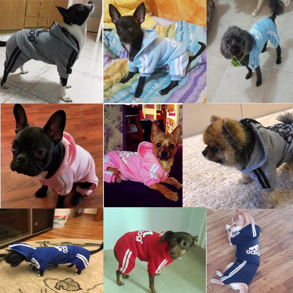 Спортивный костюм для собаки купить на Алиэкспресс