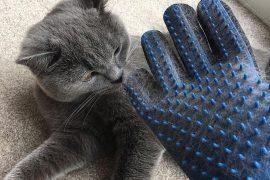 Товары для животных на Алиэкспресс: ТОП 50 товаров для собак, кошек, птиц, рыб и т.д.