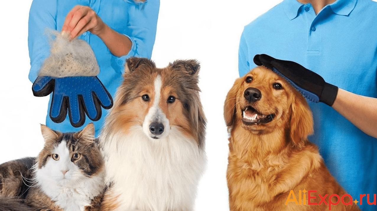 Перчатка для вычесывания шерсти домашних животныхTAILUP купить на Алиэкспресс