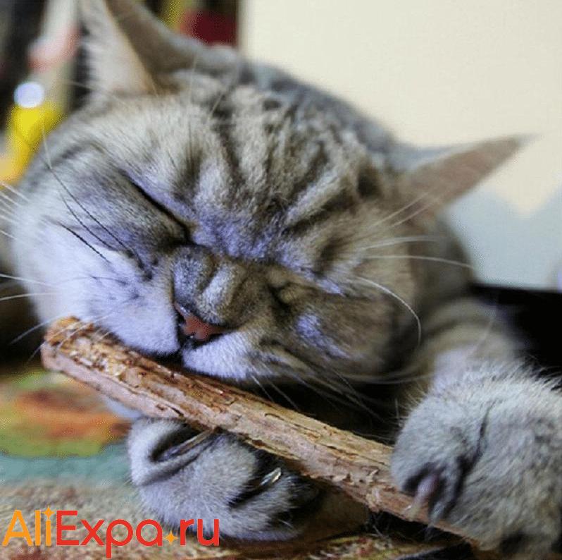 Мятные палочки для кошек VKTECH купить на Алиэкспресс