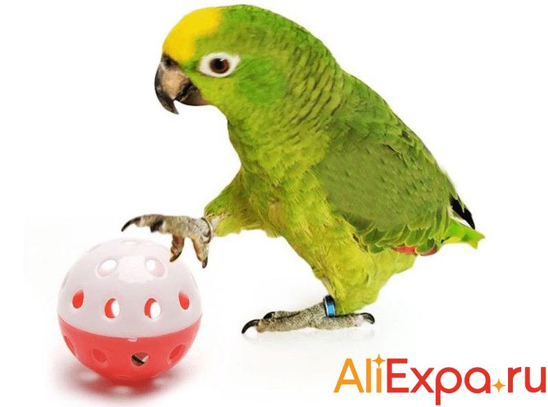Мячик для попугая Let's Pet купить на Алиэкспресс