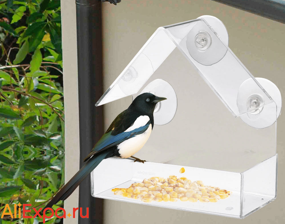 Пластиковая кормушка для птиц на присосках купить на Алиэкспресс