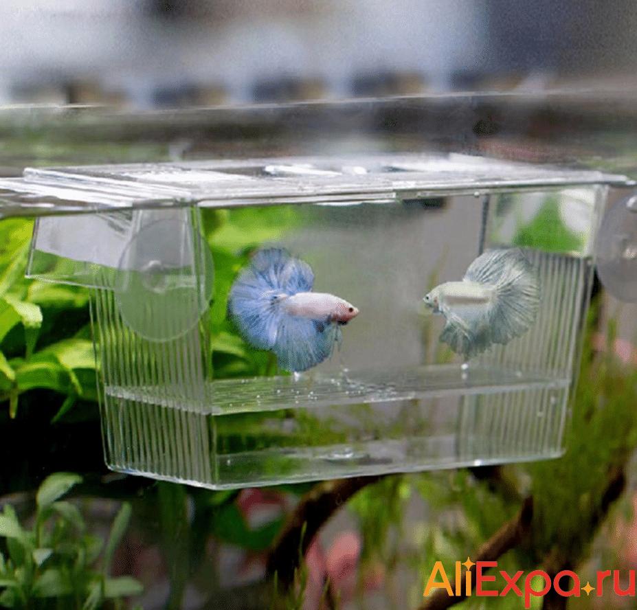 Отсадник в аквариум для мальков купить на Алиэкспресс