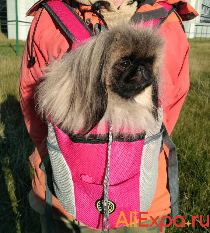 Рюкзак-переноска для собак La MaxZa купить на Алиэкспресс